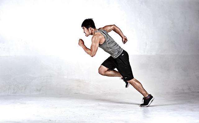 svalovec v běhu