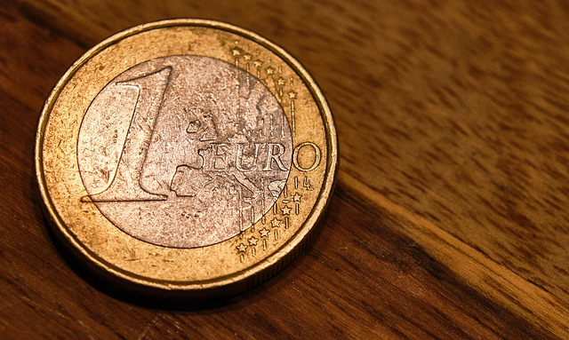 jedno euro
